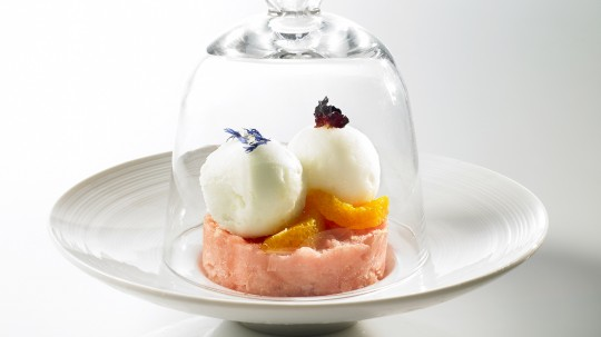 photographe culinaire glaces sorbets montreuil